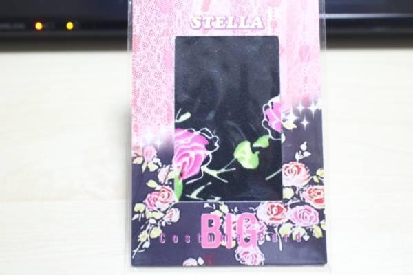 ◆ほしのあき【STELLA】BIGコスチューム グッズの画像