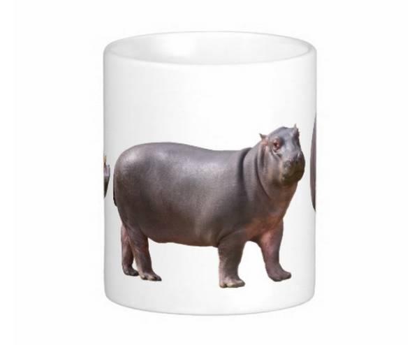 カバのマグカップ_カバは愛嬌があるが、実は獰猛な動物だそう