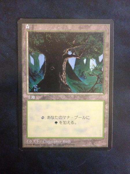 ◆4ED 森/Forest (日/黒枠/Dark Tree) 9枚まで_画像1