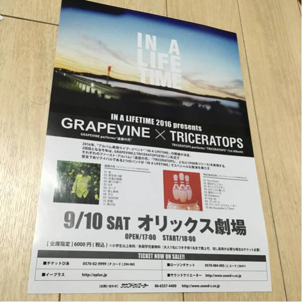 grapevine トライセラトップス ライヴ 告知 チラシ 2016 大阪