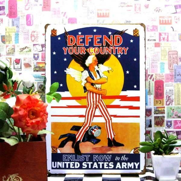 【ブリキ看板】 鷲ワシ使い 星条旗★ アメリカン雑貨ビンテージ func_画像1