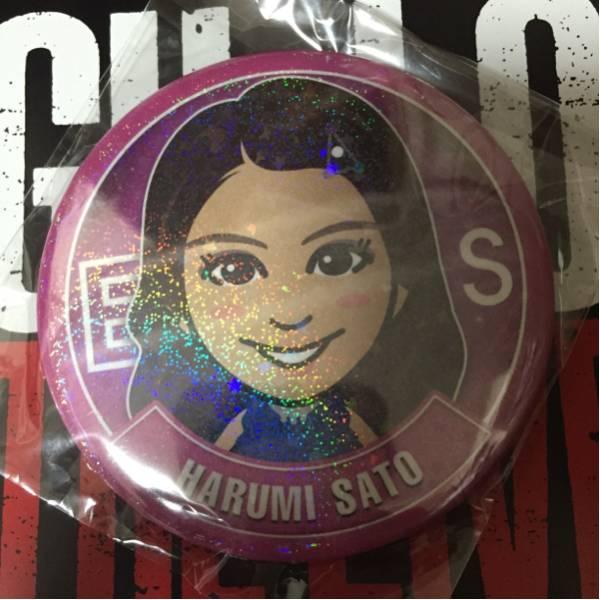 HiGH&LOW THE LIVE E-girls Flower 佐藤晴美 モバイルデカ缶バッジ ライブグッズの画像