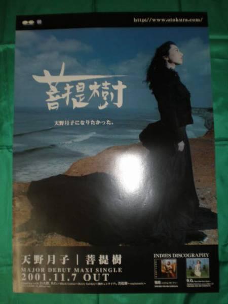 天野月子 菩提樹 B2サイズポスター