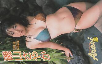 磯山さやか ヤングアニマル 抽プレ/ビキニ水着/テレカ/jl12 グッズの画像