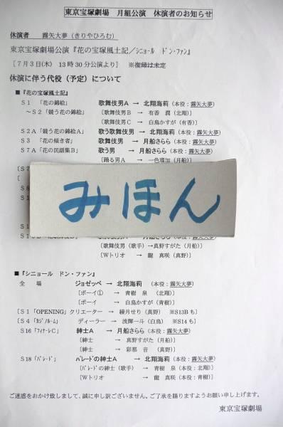 超レア★切手可宝塚シニョール代役霧矢大夢北翔海莉龍真咲チラシ