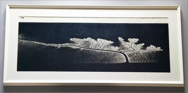 【ウィリアム・ガーネット Dendritic Flow (額装)】検:スミソニアン国立航空宇宙博物館/航空写真_画像1
