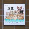 ≪送料無料≫表札 タイル 猫デザイン表札 子猫いっぱい おし