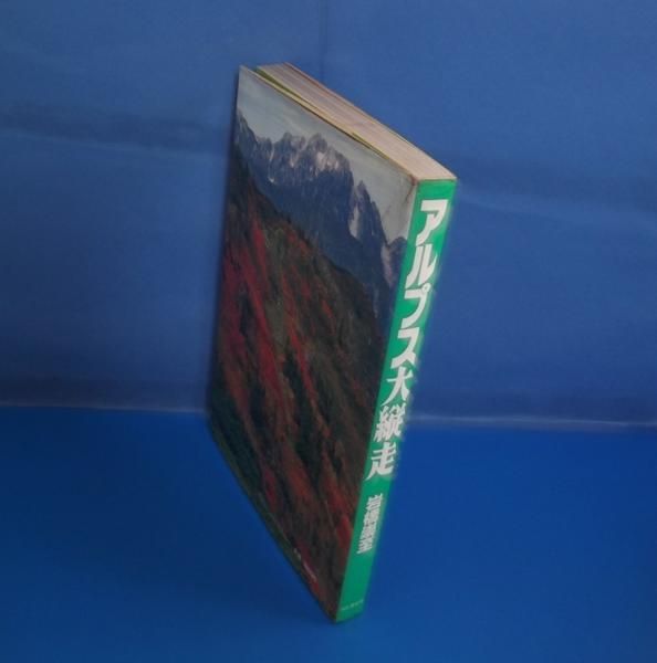 ★1984年 アルプス大縦走 岩橋崇至 山と渓谷社_画像3