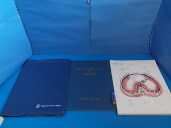 頭部の横断面  photographic atlas of anatomy  三共株式会社