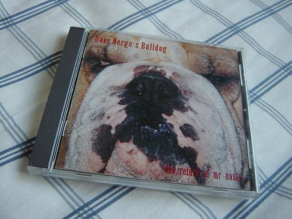 DAVE NERGE 「THE RETURN OF MY NASTY」 STRATOVARIOUS,SILVER MOUNTAIN関連 メロディアス・ハード系名盤_画像1