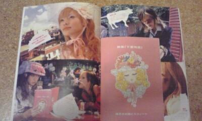 ◆即決!!◆下妻物語 パンフ◆土屋アンナ・深田恭子◆_画像3