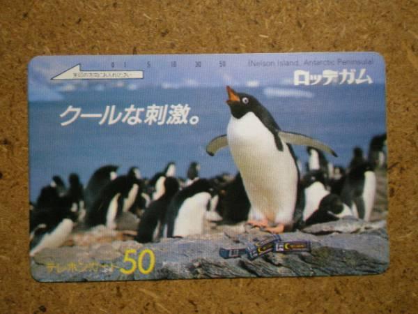 doub・ペンギン ロッテガム テレカ_画像1