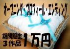 期間限定◆オープニング プロフィール エンドロール ムービー DVD3点で1万円 k9