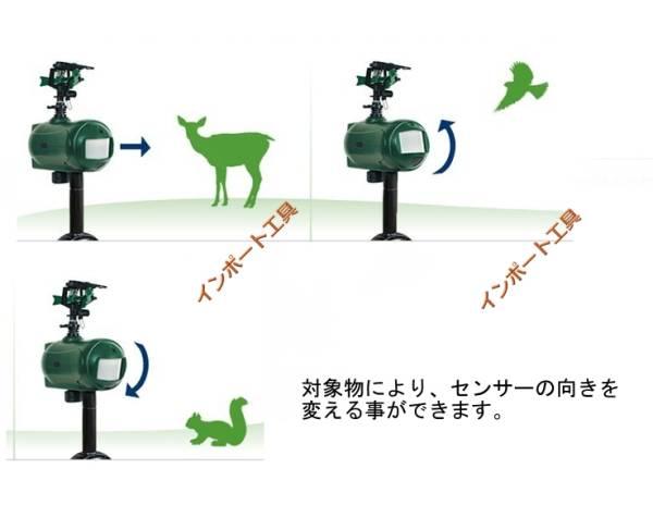 自動放水器 (カナダ製) シャワー 有害動物の撃退に 防犯 赤外線センサー 獣柵 シカ カラス 猿 イノシシ_画像3