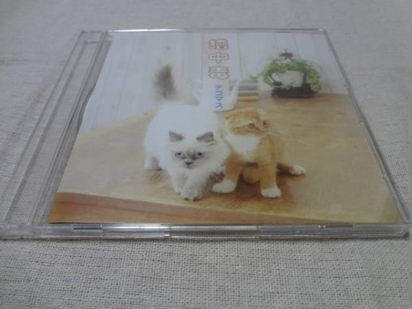 ◆◇テゴマス 猫中毒 通常 CD 即決◇◆