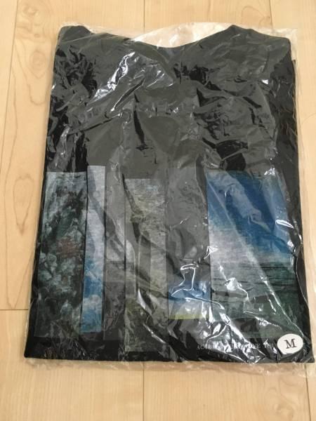 Acidman Tシャツ 10feet 新品