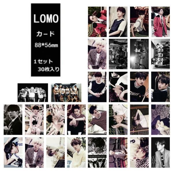 EXO(エクソ) LOVE ME RIGHT  LOMOカード30枚