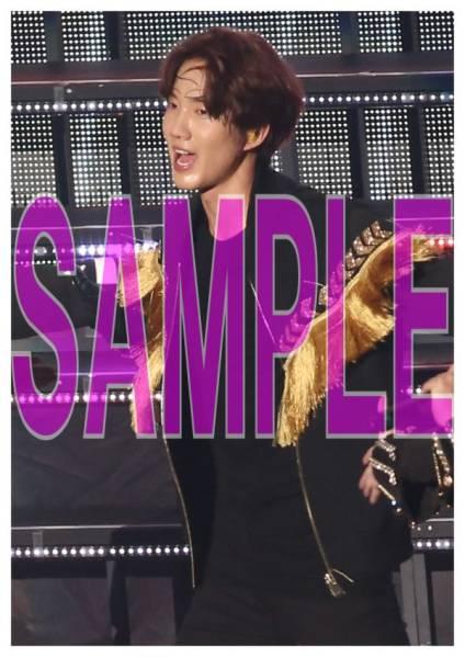 超新星 ゴニル LIVE TOUR 2015 THE FINAL 写真20枚c
