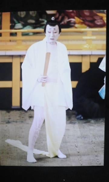 歌舞伎座・南座 舞台 生写真 24