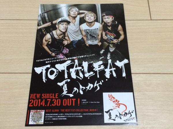 totalfat CD 発売 告知 チラシ 2014 夏のトカゲ ライブ告知