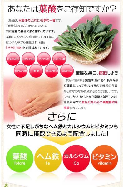 葉酸&ヘム鉄 カルシウムビタミン入り 約1ヵ月分 女性 美容 栄養 健康食品 サプリメント_画像2
