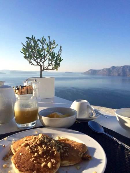 世界唯一の栄養破壊なし本当のオリーブ:史上初: オリーブ酢赤_Image: Real TABLE olives in Santorini