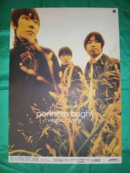 Wildflower ワイルドフラワー northern bright B2サイズポスター
