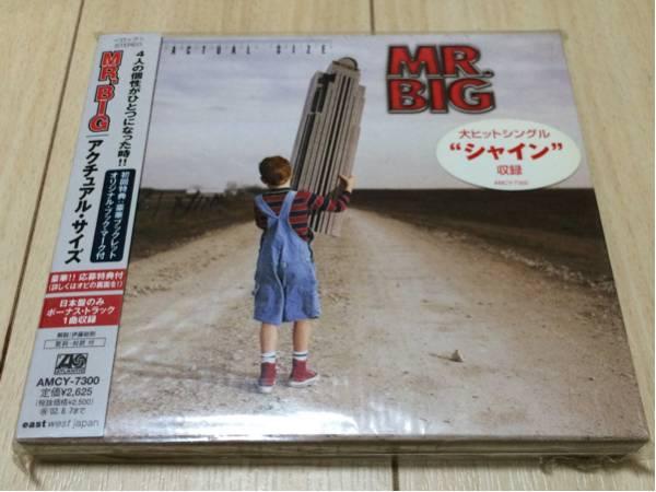 mr.big ミスター・ビッグ 直筆サイン入り 日本盤 CD アクチュアル・サイズ ビリー・シーン エリック・マーティン
