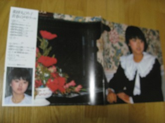 薬師丸ひろ子 オールカラー写真集8ページ LP内の封入品 コンサートグッズの画像