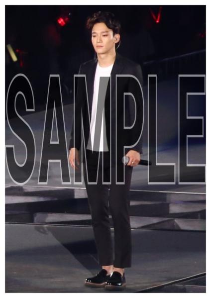 EXO チェン SMTOWN LIVE WORLD TOUR4 東京 写真8枚
