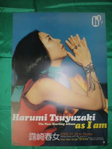 露崎春女 as I am B2サイズポスター