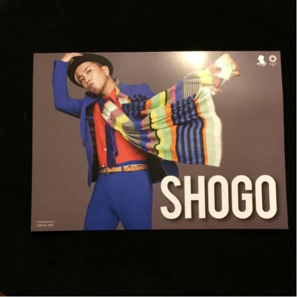 アルバムチラシ★SHOGO (175R)