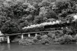 ◆【即決写真】C11+貨 1974.10 会津線 会津水沼/614-25