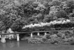 ◆【即決写真】C11+貨 1974.10 会津線 会津水沼/614-26