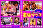 【レアDVD】女だらけの道場マッチ2【フェリーナ参戦】