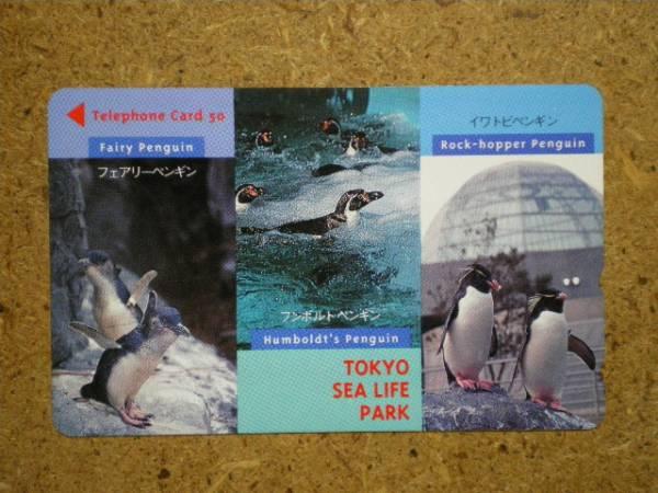 doub・ペンギン 東京シーライフパーク テレカ_画像1