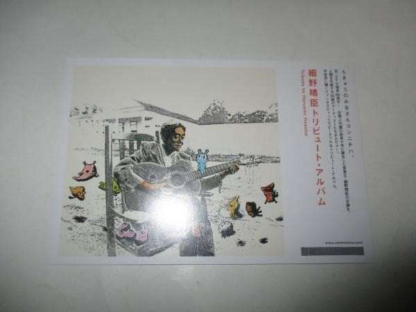 宣伝用ポストカード 細野晴臣 トリビュート