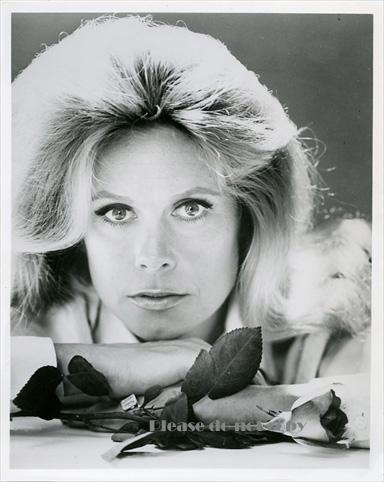 1964年『奥さまは魔女』エリザベス・モンゴメリー アートフォト