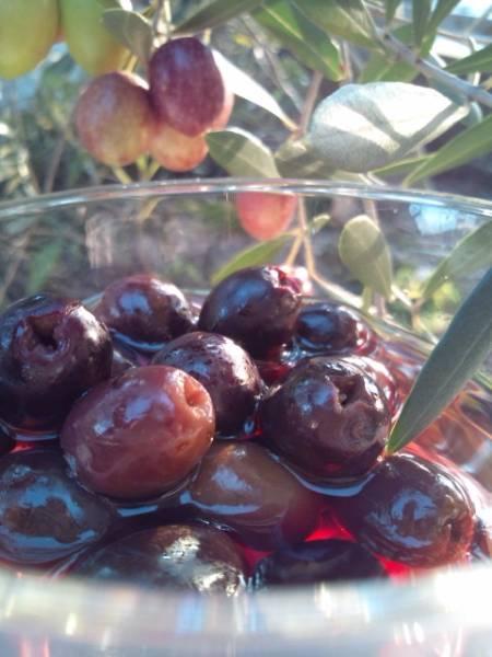 世界唯一栄養破壊なしオリーブ史上初オリーブ赤ワイン漬オリーブ_画像2