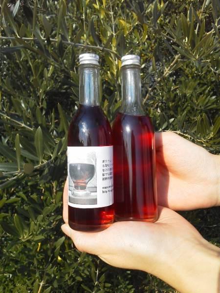 世界唯一栄養破壊なしオリーブ史上初オリーブ赤ワイン漬オリーブ_元の非売品のおりーぶポリフェノールわいん