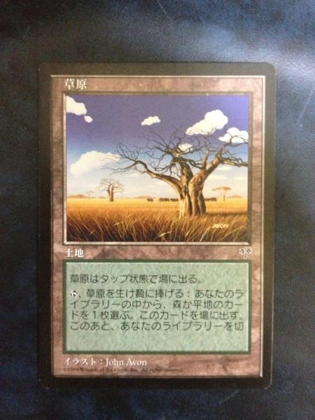 ◆MIR 草原/Grasslands (日) 6枚まで_画像1