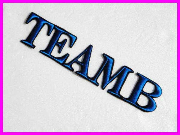 ≪ TEAM B ≫ 刺繍 ワッペン AKB 48