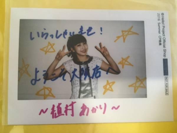 非売品■2016 Summerキャンペーン大阪店限定L判写真 植村あかり