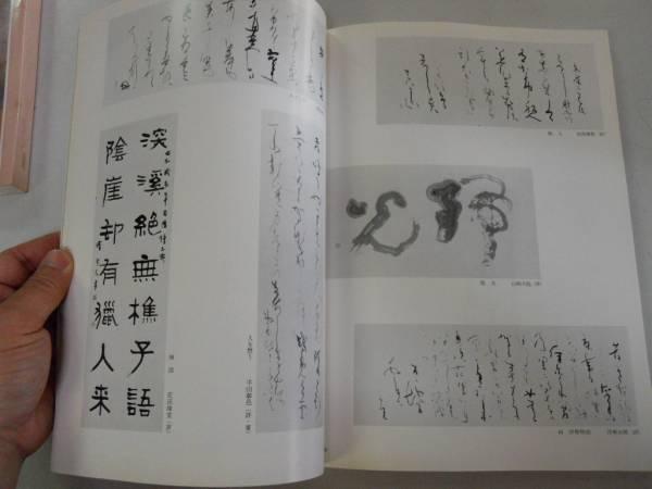●日展作品集●第13回●1981年●図録●日本画洋画彫刻工芸美術書_画像3