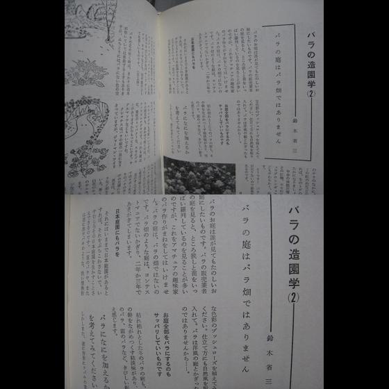 バラ/家庭のバラづくり/鈴木省三・8p/新園芸手帖/昭和レトロ_画像2