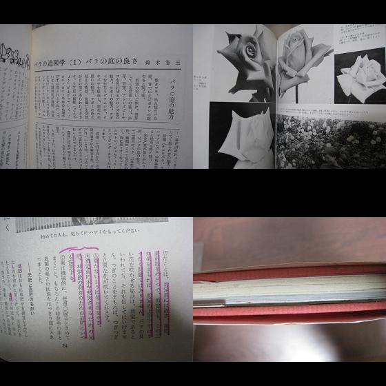 バラ/家庭のバラづくり/鈴木省三・8p/新園芸手帖/昭和レトロ_画像3