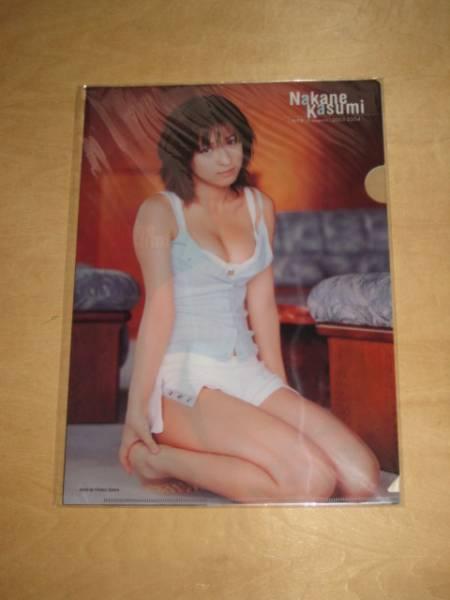 週刊プレイボーイ 2003-2004 クリアファイル 3枚 仲根かすみ 送\164~