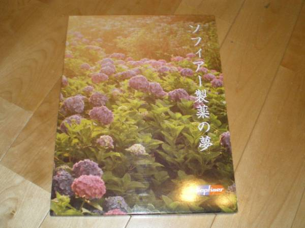 SOPHIA//ソフィア ツアーパンフレット//2003-04