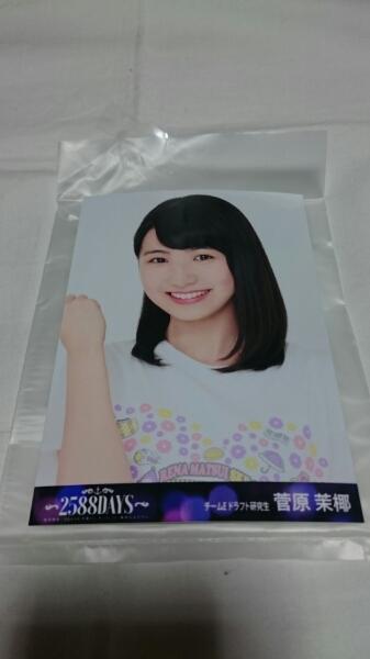 「松井玲奈 SKE48 卒業コンサート Blu-ray 生写真 菅原茉椰」_画像1