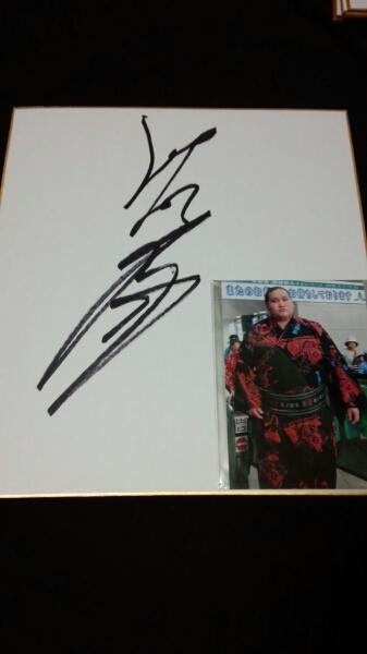 大相撲 照ノ富士 直筆サイン色紙 写真付 グッズの画像